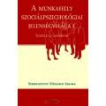 A munkahely szociálpszichológiai jelenségvilága
